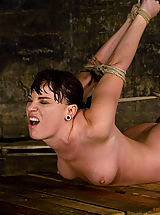 puffy boobs, Dana DeArmond, is stripped, bound, and forced to obey.
