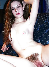 Hairy Nippels, Forefathers Cuties